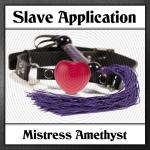Slave Application Logo