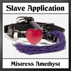 Slave Application Logo
